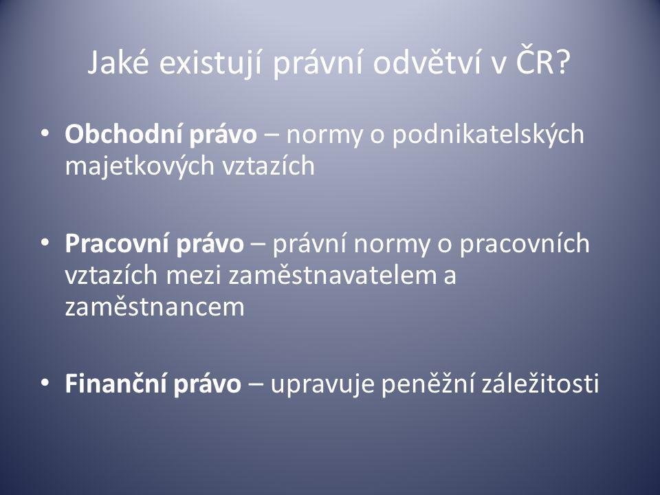 Jaké existují právní odvětví v ČR? Obchodní právo – normy o podnikatelských majetkových vztazích Pracovní právo – právní normy o pracovních vztazích m