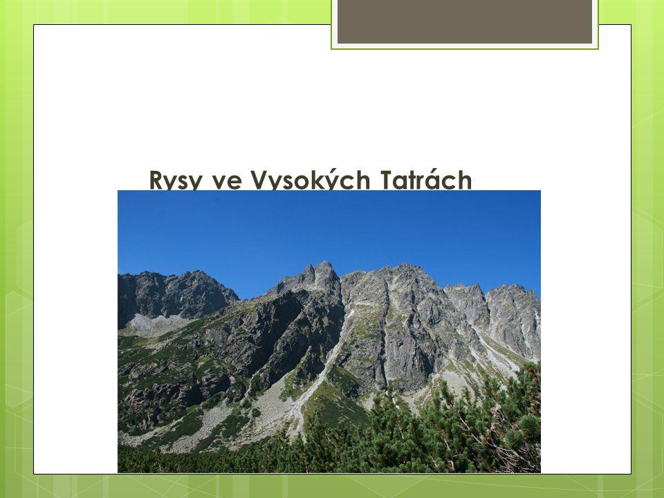 Rysy ve Vysokých Tatrách