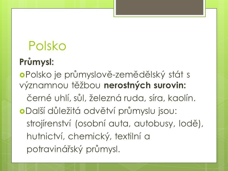 Polsko Průmysl:  Polsko je průmyslově-zemědělský stát s významnou těžbou nerostných surovin: černé uhlí, sůl, železná ruda, síra, kaolín.  Další důl