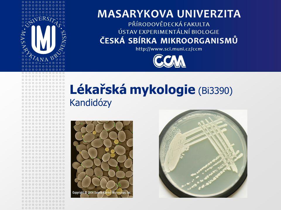 Lékařská mykologie (Bi3390) Kandidózy MASARYKOVA UNIVERZITA PŘÍRODOVĚDECKÁ FAKULTA ÚSTAV EXPERIMENTÁLNÍ BIOLOGIE ČESKÁ SBÍRKA MIKROORGANISMŮ http://www.sci.muni.cz/ccm