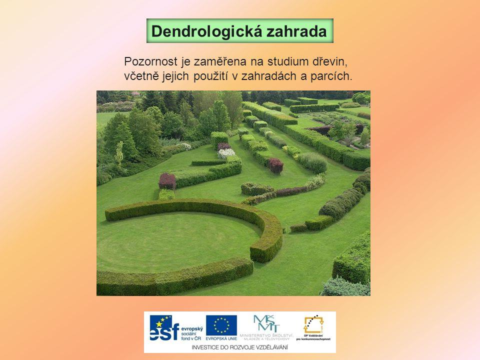 Dendrologická zahrada Pozornost je zaměřena na studium dřevin, včetně jejich použití v zahradách a parcích.