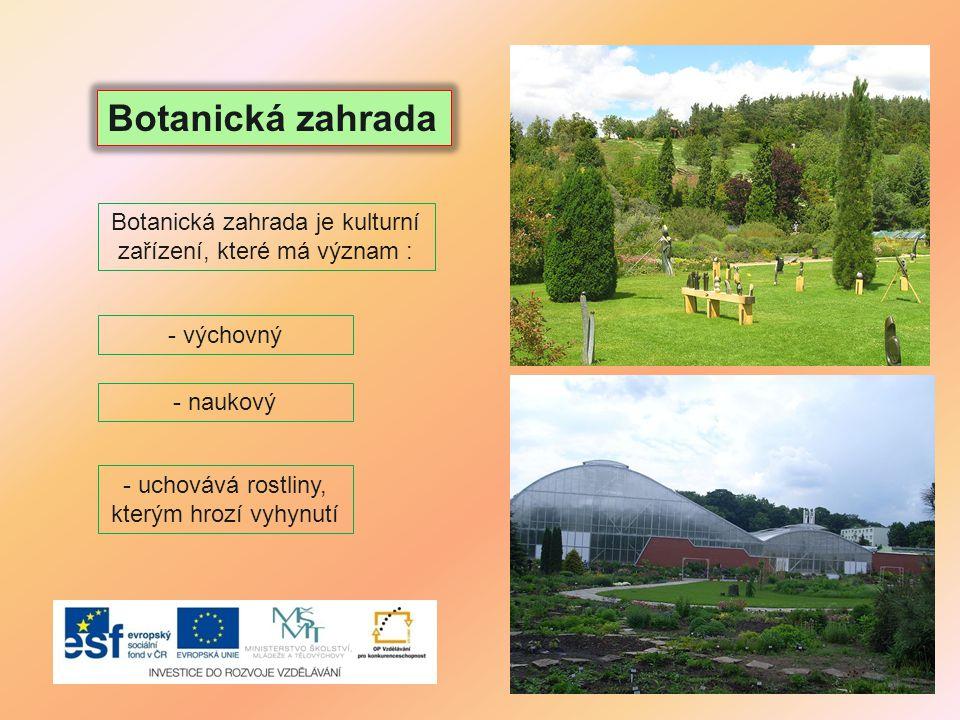 Botanická zahrada - uchovává rostliny, kterým hrozí vyhynutí Botanická zahrada je kulturní zařízení, které má význam : - výchovný - naukový