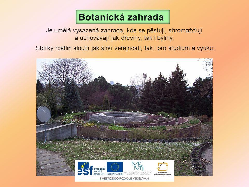Sbírky rostlin slouží jak širší veřejnosti, tak i pro studium a výuku. Botanická zahrada Je umělá vysazená zahrada, kde se pěstují, shromažďují a ucho