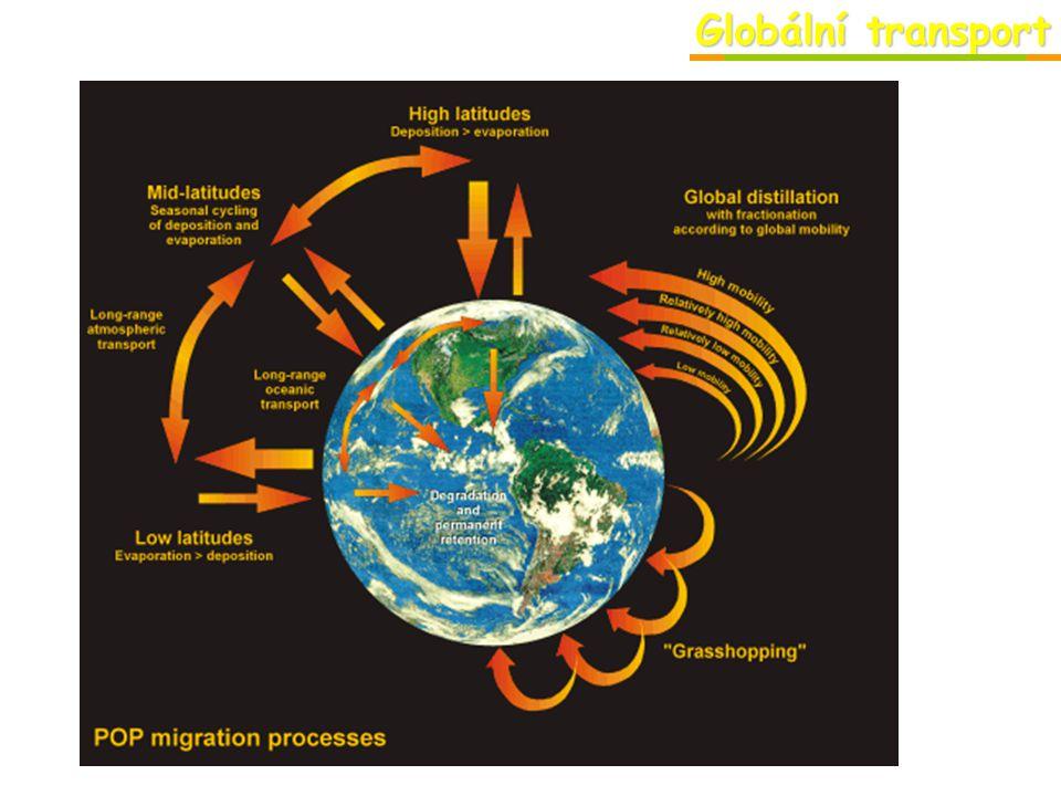 Globální transport