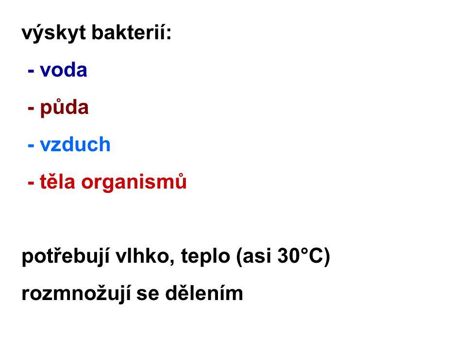výskyt bakterií: - voda - půda - vzduch - těla organismů potřebují vlhko, teplo (asi 30°C) rozmnožují se dělením
