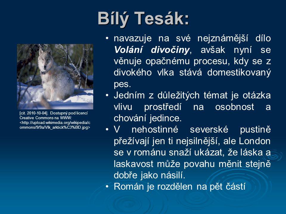 Bílý Tesák: navazuje na své nejznámější dílo Volání divočiny, avšak nyní se věnuje opačnému procesu, kdy se z divokého vlka stává domestikovaný pes. J