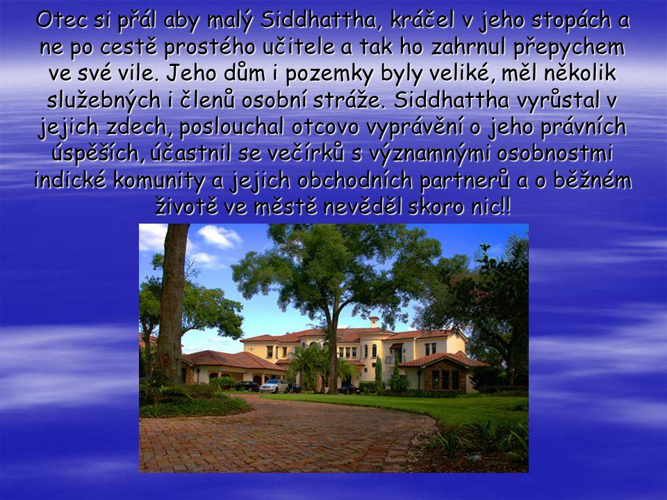 Otec Siddhatthu dal studovat na prestižní soukromou střední školu.