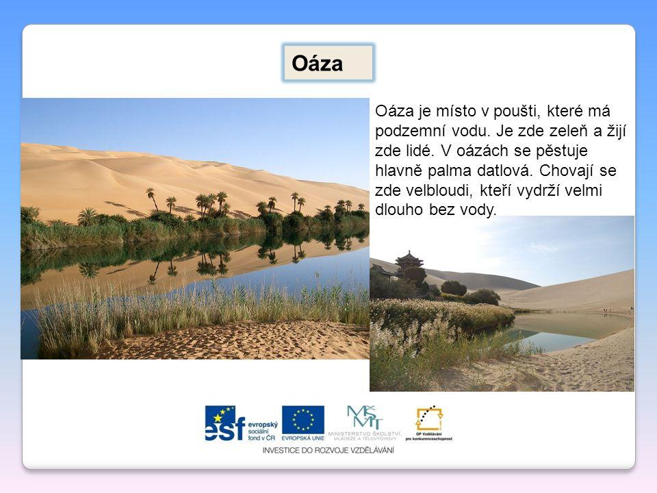 Oáza Oáza je místo v poušti, které má podzemní vodu. Je zde zeleň a žijí zde lidé. V oázách se pěstuje hlavně palma datlová. Chovají se zde velbloudi,
