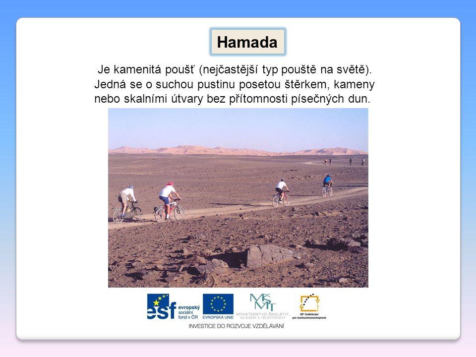 Hamada Je kamenitá poušť (nejčastější typ pouště na světě). Jedná se o suchou pustinu posetou štěrkem, kameny nebo skalními útvary bez přítomnosti pís