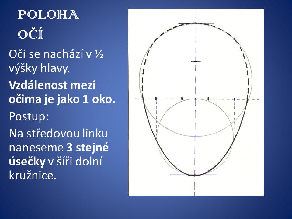 POLOHA O Č Í Oči se nachází v ½ výšky hlavy. Vzdálenost mezi očima je jako 1 oko. Postup: Na středovou linku naneseme 3 stejné úsečky v šíři dolní kru