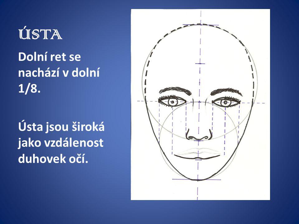 ÚSTA Dolní ret se nachází v dolní 1/8. Ústa jsou široká jako vzdálenost duhovek očí.