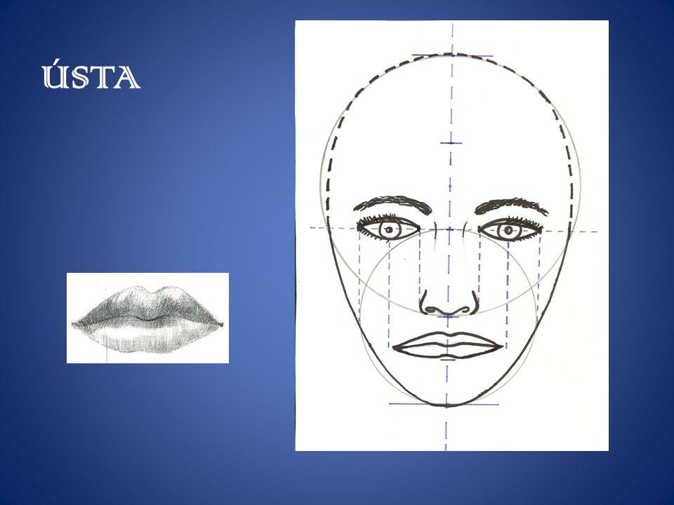 UŠI, KRK Uši se nachází ve výšce mezi obočím a špičkou nosu.