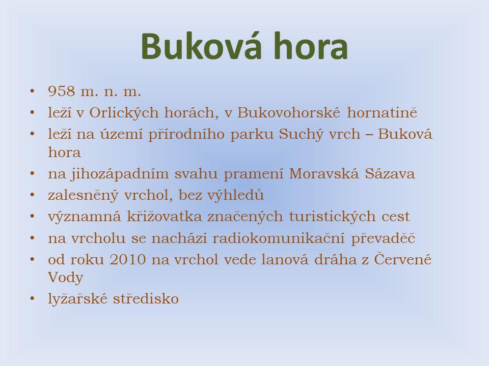 Buková hora 958 m. n. m. leží v Orlických horách, v Bukovohorské hornatině leží na území přírodního parku Suchý vrch – Buková hora na jihozápadním sva