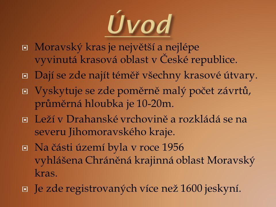  Moravský kras je největší a nejlépe vyvinutá krasová oblast v České republice.  Dají se zde najít téměř všechny krasové útvary.  Vyskytuje se zde