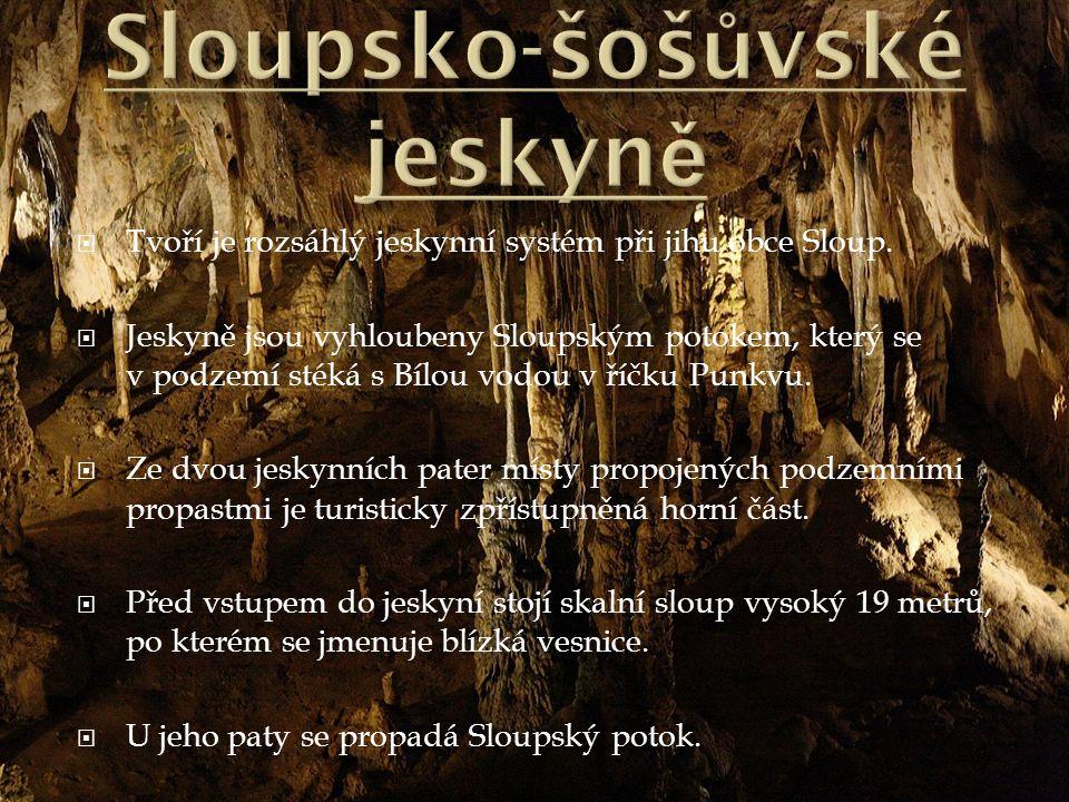  Tvoří je rozsáhlý jeskynní systém při jihu obce Sloup.  Jeskyně jsou vyhloubeny Sloupským potokem, který se v podzemí stéká s Bílou vodou v říčku P