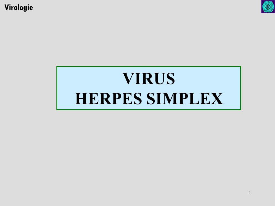 1 Virologie VIRUS HERPES SIMPLEX