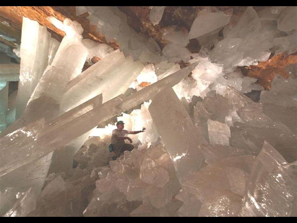 Jakmile přestane být v dole Naica těžba rud efektivní, důl se zavře a čerpání vody se zastaví. Tehdy se jeskyně znovu ponoří pod hladinu a krystaly za