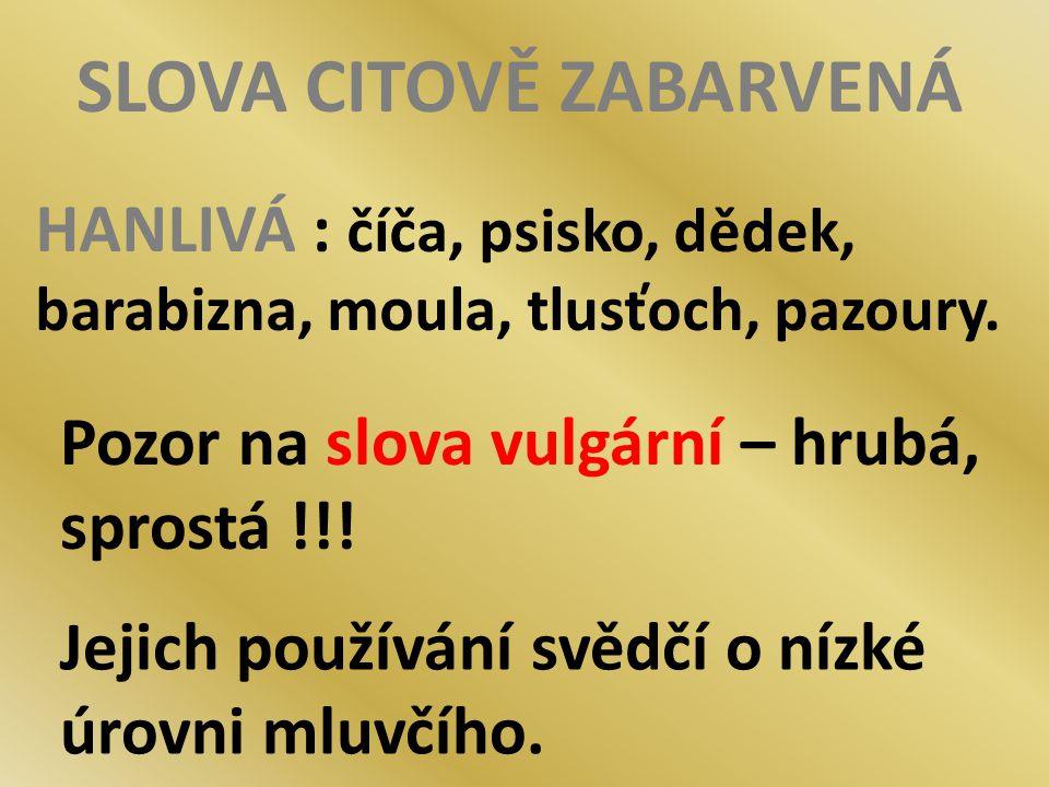 SLOVA CITOVĚ ZABARVENÁ HANLIVÁ : číča, psisko, dědek, barabizna, moula, tlusťoch, pazoury. Pozor na slova vulgární – hrubá, sprostá !!! Jejich používá
