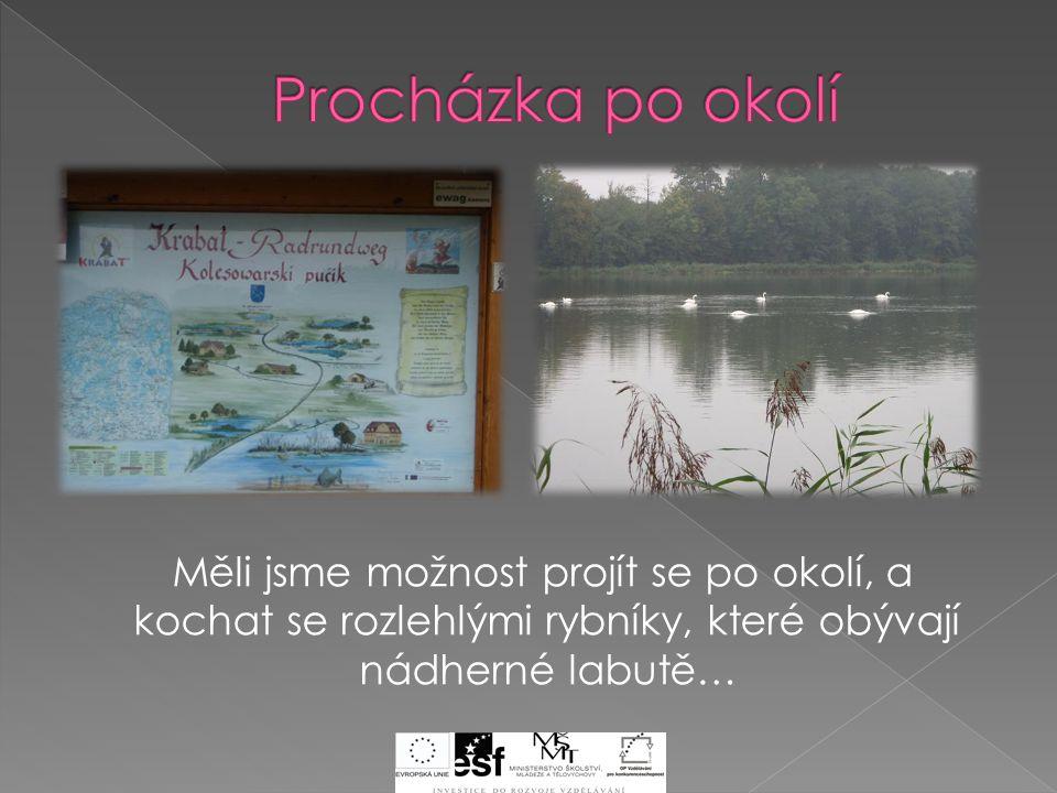 Měli jsme možnost projít se po okolí, a kochat se rozlehlými rybníky, které obývají nádherné labutě…
