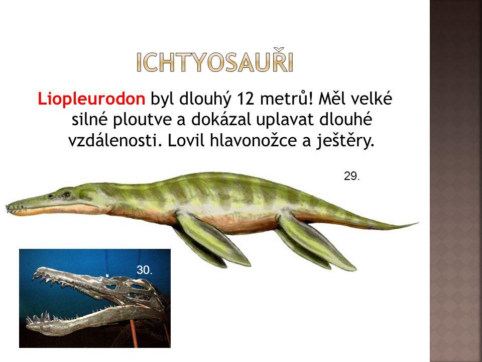 Liopleurodon byl dlouhý 12 metrů! Měl velké silné ploutve a dokázal uplavat dlouhé vzdálenosti. Lovil hlavonožce a ještěry. 29. 30.