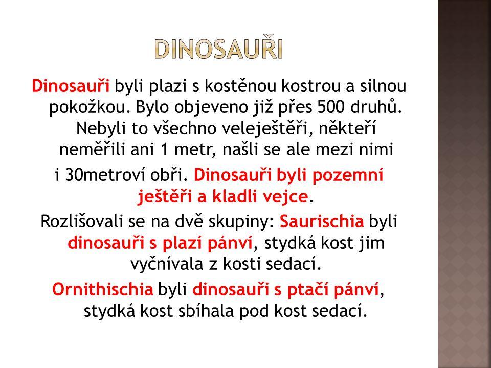 Dinosauři byli plazi s kostěnou kostrou a silnou pokožkou. Bylo objeveno již přes 500 druhů. Nebyli to všechno veleještěři, někteří neměřili ani 1 met