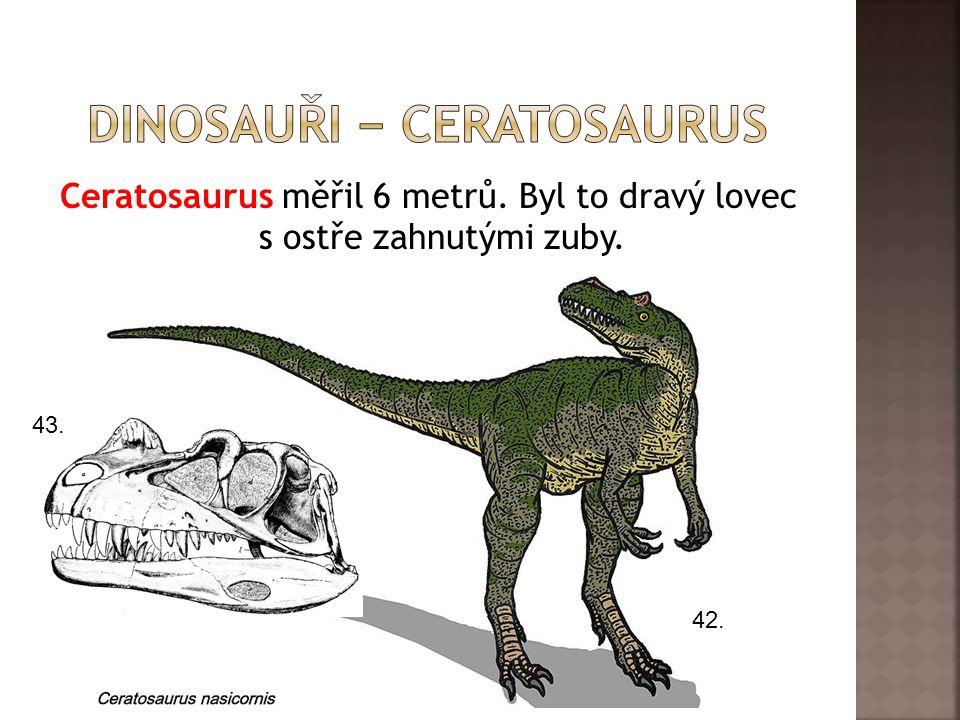 Ceratosaurus měřil 6 metrů. Byl to dravý lovec s ostře zahnutými zuby. 42. 43.