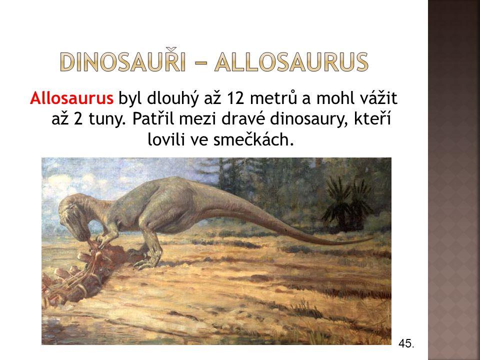 Allosaurus byl dlouhý až 12 metrů a mohl vážit až 2 tuny. Patřil mezi dravé dinosaury, kteří lovili ve smečkách. 45.