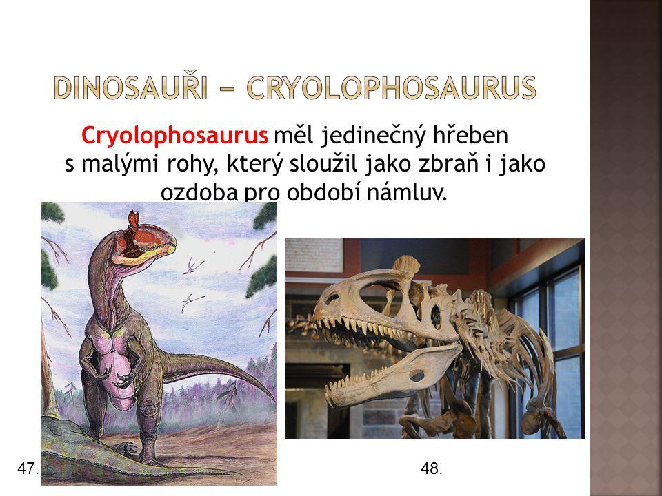 Cryolophosaurus měl jedinečný hřeben s malými rohy, který sloužil jako zbraň i jako ozdoba pro období námluv. 47.48.