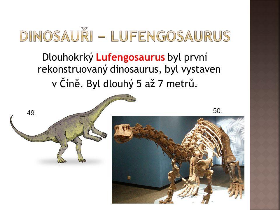 Dlouhokrký Lufengosaurus byl první rekonstruovaný dinosaurus, byl vystaven v Číně. Byl dlouhý 5 až 7 metrů. 49. 50.