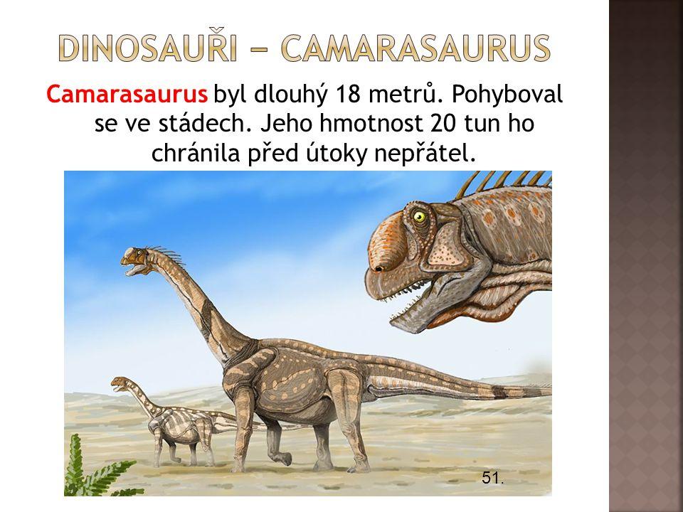 Camarasaurus byl dlouhý 18 metrů. Pohyboval se ve stádech. Jeho hmotnost 20 tun ho chránila před útoky nepřátel. 51.