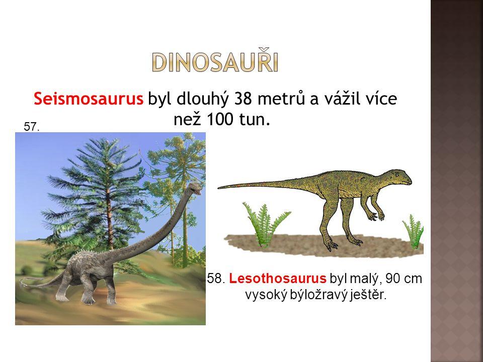 Seismosaurus byl dlouhý 38 metrů a vážil více než 100 tun. 57. 58. Lesothosaurus byl malý, 90 cm vysoký býložravý ještěr.