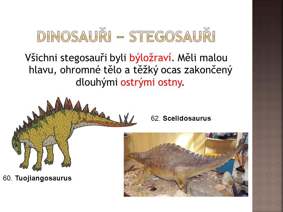 Všichni stegosauři byli býložraví. Měli malou hlavu, ohromné tělo a těžký ocas zakončený dlouhými ostrými ostny. 60. Tuojiangosaurus 62. Scelidosaurus