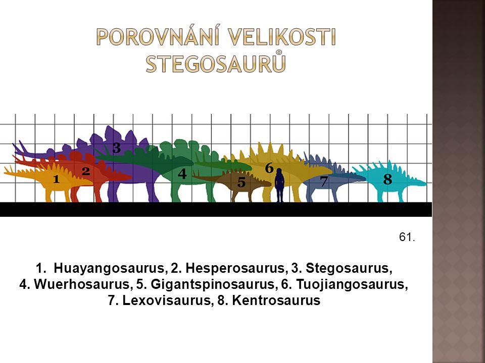 61. 1.Huayangosaurus, 2. Hesperosaurus, 3. Stegosaurus, 4. Wuerhosaurus, 5. Gigantspinosaurus, 6. Tuojiangosaurus, 7. Lexovisaurus, 8. Kentrosaurus