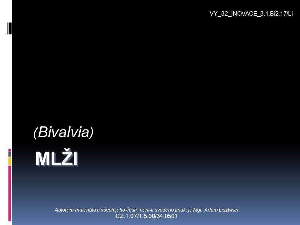 ( Bivalvia ) Autorem materiálu a všech jeho částí, není-li uvedeno jinak, je Mgr. Adam Lisztwan CZ.1.07/1.5.00/34.0501 VY_32_INOVACE_3.1.Bi2.17/Li MLŽ