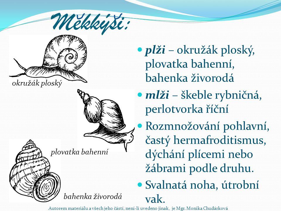 Mekkýsi: plži – okružák ploský, plovatka bahenní, bahenka živorodá mlži – škeble rybničná, perlotvorka říční Rozmnožování pohlavní, častý hermafroditi