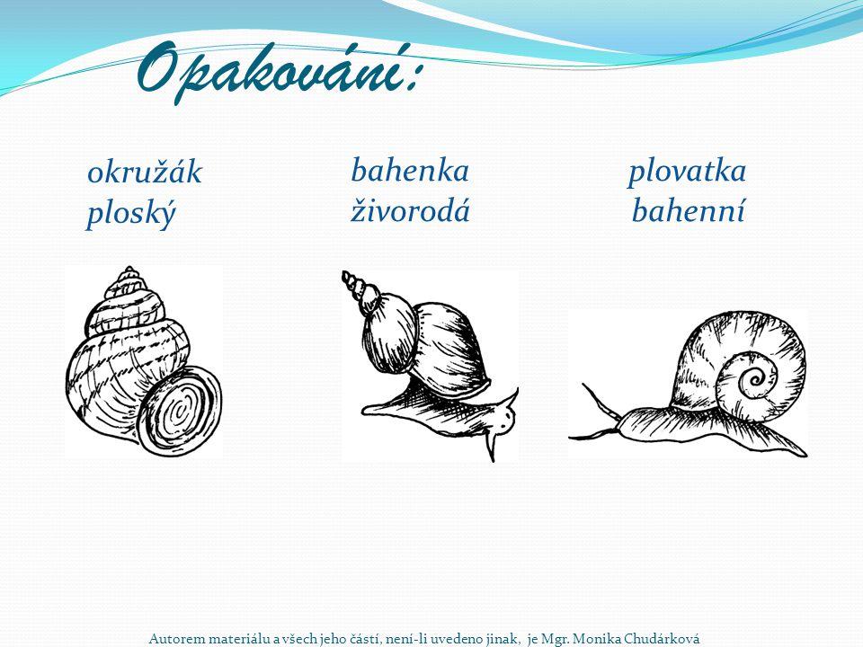 Opakování: okružák ploský plovatka bahenní bahenka živorodá Autorem materiálu a všech jeho částí, není-li uvedeno jinak, je Mgr. Monika Chudárková