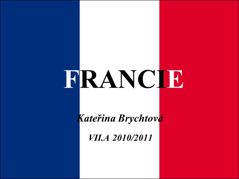 FRANCIE Kateřina Brychtová VII.A 2010/2011