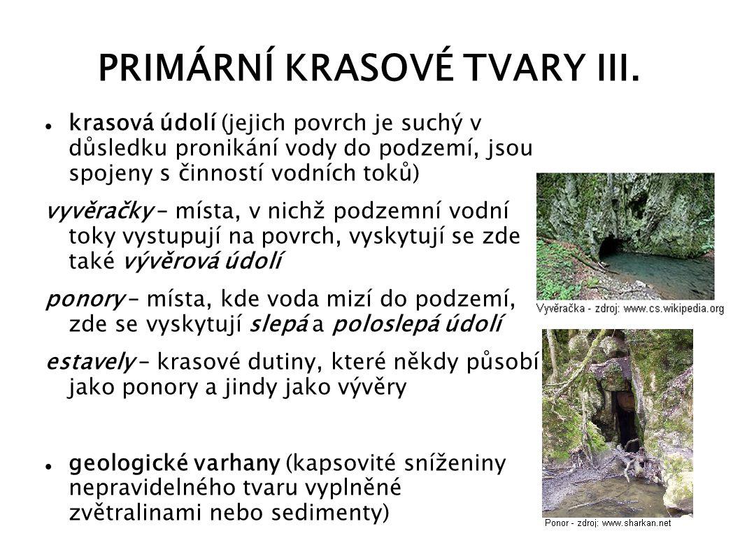 PRIMÁRNÍ KRASOVÉ TVARY III. krasová údolí (jejich povrch je suchý v důsledku pronikání vody do podzemí, jsou spojeny s činností vodních toků) vyvěračk