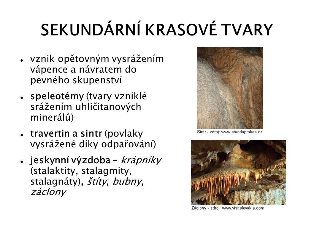 SEKUNDÁRNÍ KRASOVÉ TVARY vznik opětovným vysrážením vápence a návratem do pevného skupenství speleotémy (tvary vzniklé srážením uhličitanových minerál