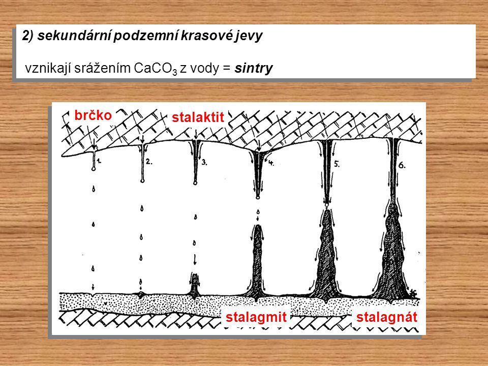 2) sekundární podzemní krasové jevy vznikají srážením CaCO 3 z vody = sintry 2) sekundární podzemní krasové jevy vznikají srážením CaCO 3 z vody = sin