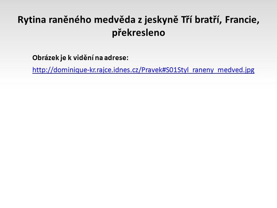 Rytina raněného medvěda z jeskyně Tří bratří, Francie, překresleno http://dominique-kr.rajce.idnes.cz/Pravek#S01Styl_raneny_medved.jpg Obrázek je k vi