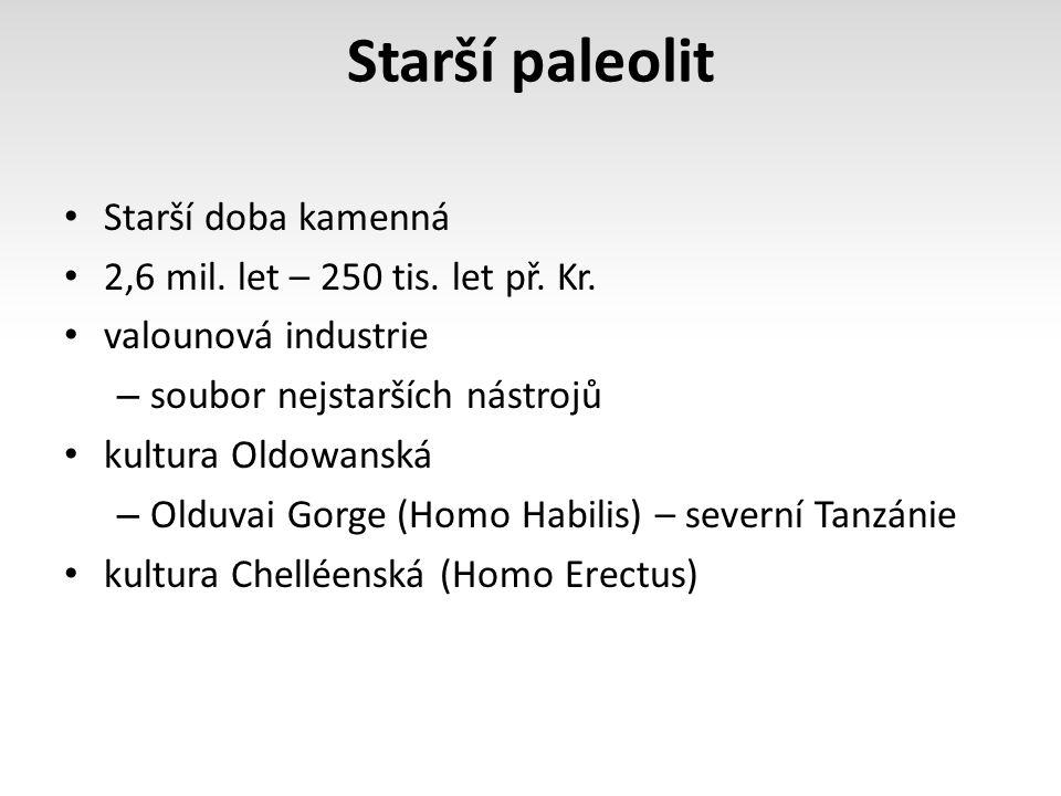 Starší paleolit Starší doba kamenná 2,6 mil. let – 250 tis. let př. Kr. valounová industrie – soubor nejstarších nástrojů kultura Oldowanská – Olduvai