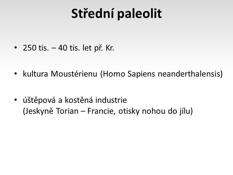 Střední paleolit 250 tis. – 40 tis. let př. Kr. kultura Moustérienu (Homo Sapiens neanderthalensis) úštěpová a kostěná industrie (Jeskyně Torian – Fra