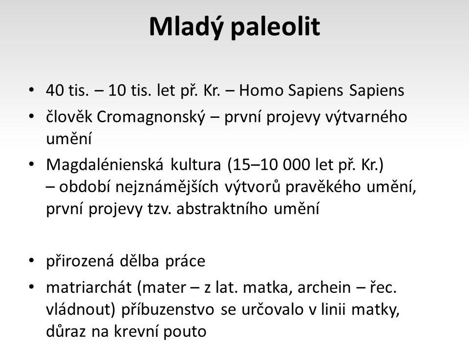 Mladý paleolit 40 tis. – 10 tis. let př. Kr. – Homo Sapiens Sapiens člověk Cromagnonský – první projevy výtvarného umění Magdalénienská kultura (15–10