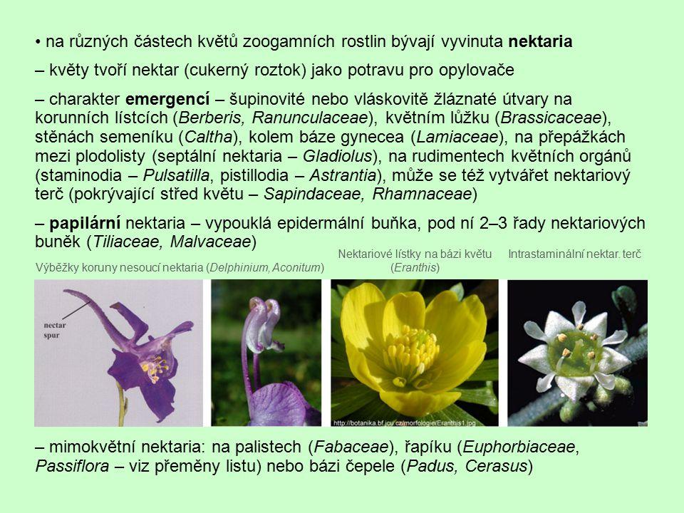 na různých částech květů zoogamních rostlin bývají vyvinuta nektaria – květy tvoří nektar (cukerný roztok) jako potravu pro opylovače – charakter emer