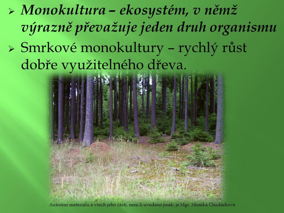 Monokultura – ekosystém, v němž výrazně převažuje jeden druh organismu  Smrkové monokultury – rychlý růst dobře využitelného dřeva.