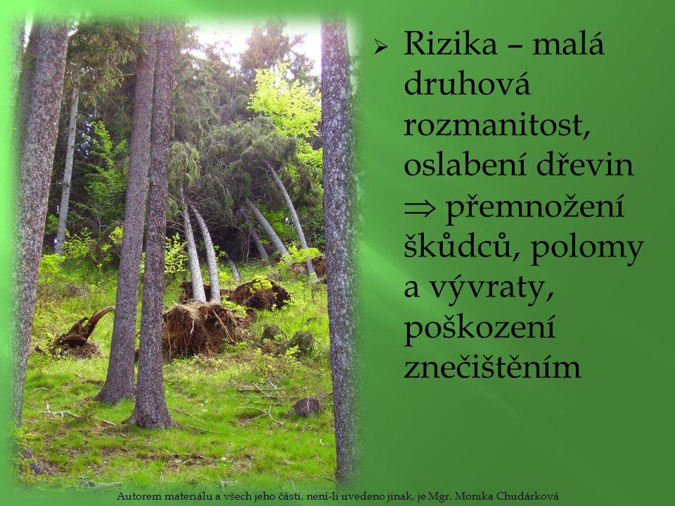  Rizika – malá druhová rozmanitost, oslabení dřevin  přemnožení škůdců, polomy a vývraty, poškození znečištěním Autorem materiálu a všech jeho částí, není-li uvedeno jinak, je Mgr.