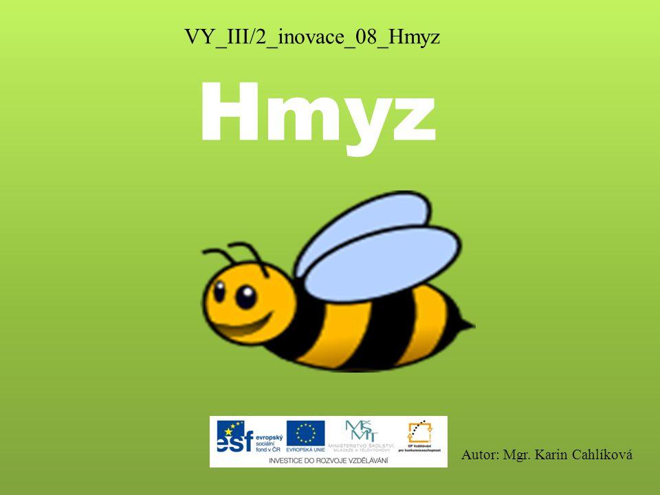 Hmyz VY_III/2_inovace_08_Hmyz Autor: Mgr. Karin Cahlíková