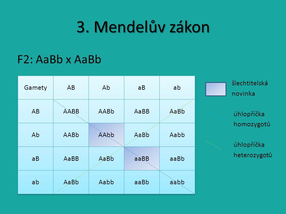 3. Mendelův zákon F2: AaBb x AaBb šlechtitelská novinka úhlopříčka homozygotů úhlopříčka heterozygotů