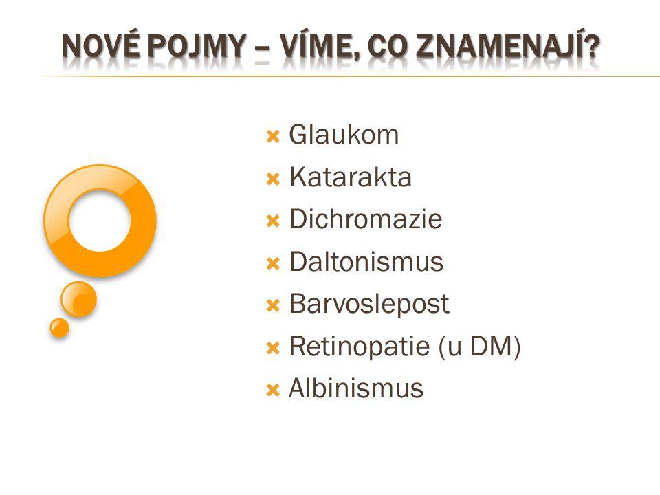  Glaukom  Katarakta  Dichromazie  Daltonismus  Barvoslepost  Retinopatie (u DM)  Albinismus